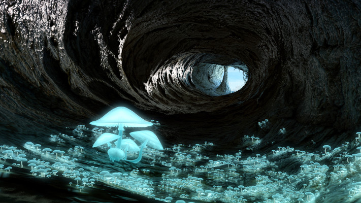 sara-tarr-glowing-mushroom-cave